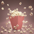 Popcorn Brain - ADD