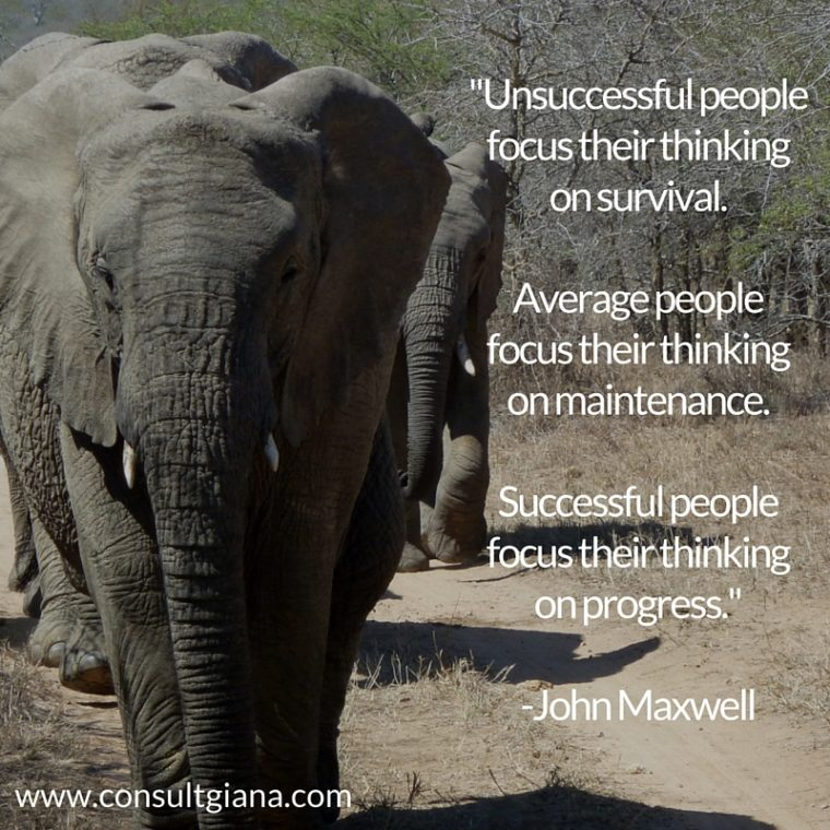 """Unsuccessful people focus their thinking on survival. Average people focus their thinking on maintenance. Successful people focus their thining on progress."" -John MaxwellUnsuccessful people focus their thinking on survival.Average people focus their thinking on maintenance.Successful people focus their thining on progress.--John Maxwell"