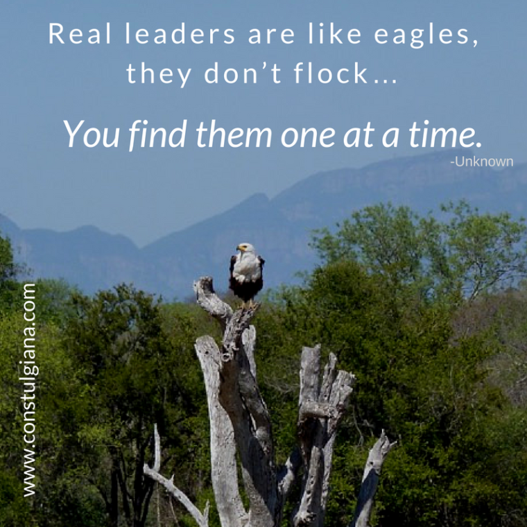 real-leaders-are-like-eagles-they-dont-flock-you-find-them-one-at-a-time